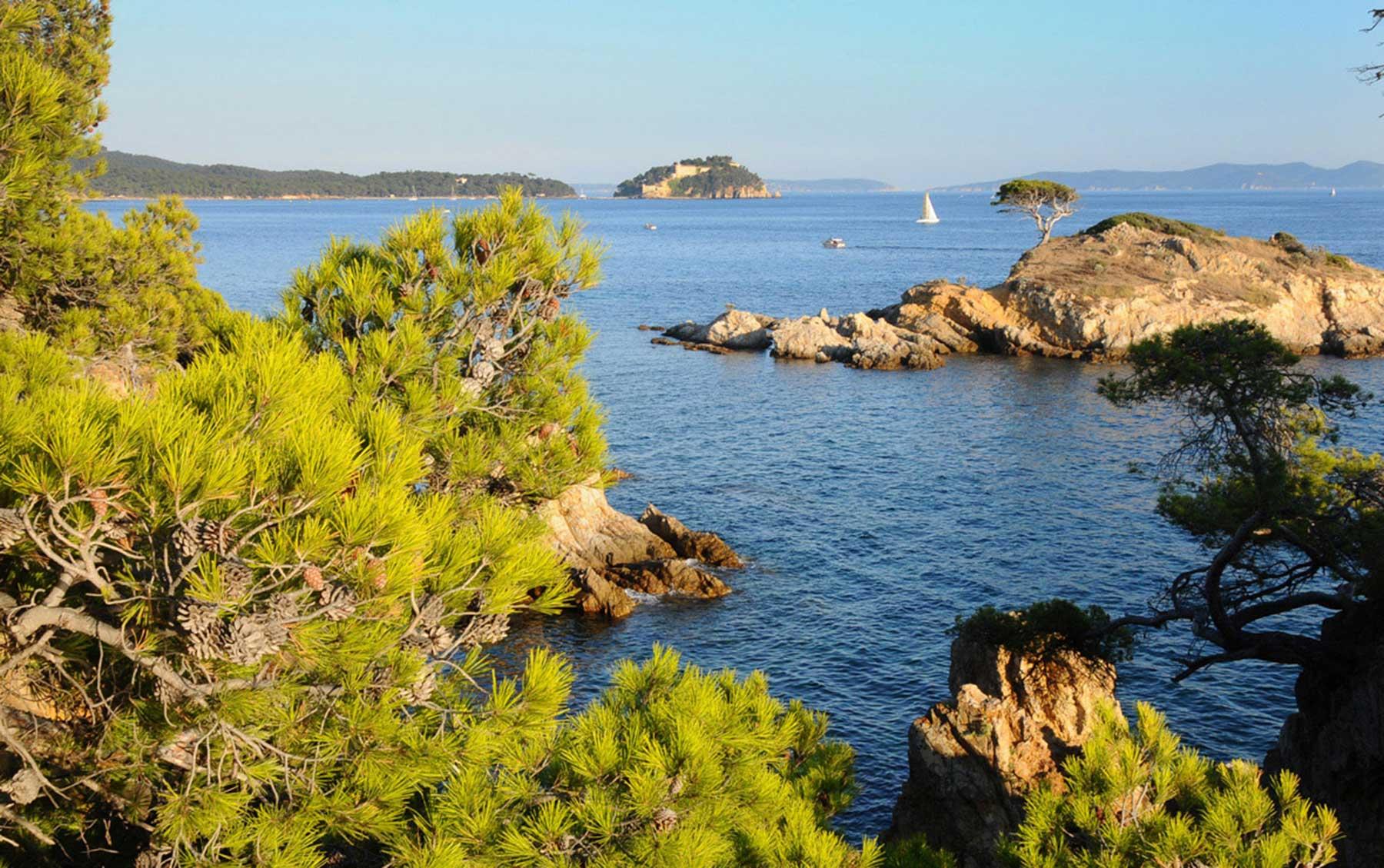Sortie Côte d'Azur | Bormes-les-Mimosas